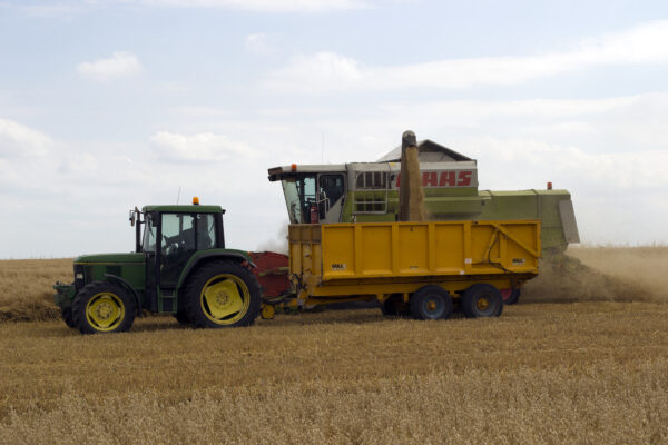 Harvest 2015 at Glebe Farm